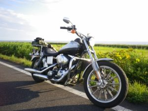 豊洲腰痛バイク
