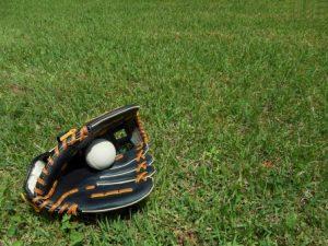 少年野球豊洲