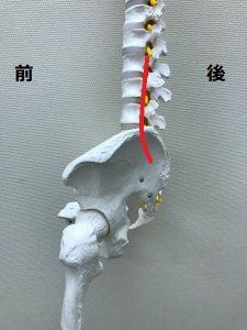 豊洲カイロ腰痛